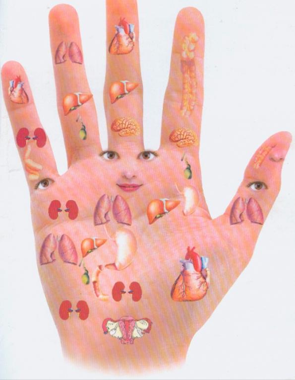 Một số cách massage bấm huyệt trên bàn tay giúp chữa bệnh